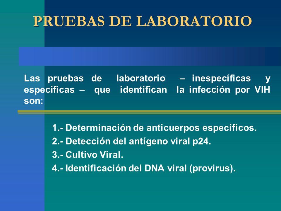 PRUEBAS DE LABORATORIO Las pruebas de laboratorio – inespecíficas y especificas – que identifican la infección por VIH son: 1.- Determinación de antic