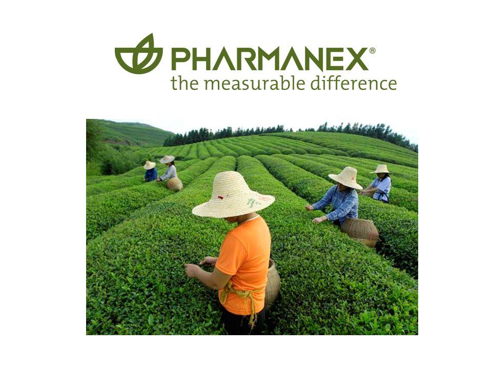 la diferencia medible Tegreen ® 97 La manera natural de proteger su salud con Té Verde sin cafeina Esta formula Unica de Pharmanex provee los nive- les mas concentrados de Polifenoles de té verde (97%)