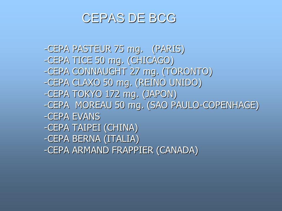 CEPAS DE BCG -CEPA PASTEUR 75 mg. (PARIS) -CEPA TICE 50 mg. (CHICAGO) -CEPA CONNAUGHT 27 mg. (TORONTO) -CEPA CLAXO 50 mg. (REINO UNIDO) -CEPA TOKYO 17