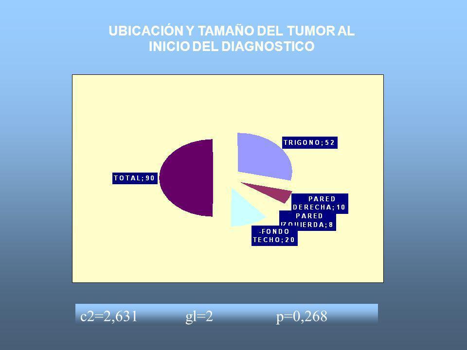 UBICACIÓN Y TAMAÑO DEL TUMOR AL INICIO DEL DIAGNOSTICO c2=2,631 gl=2 p=0,268