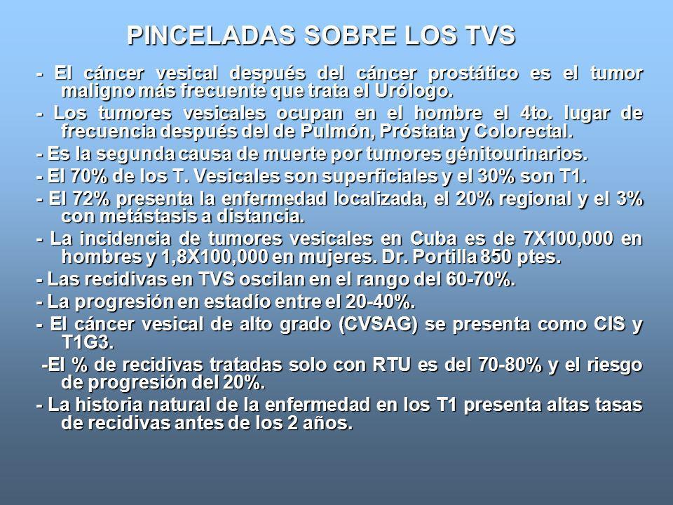 PINCELADAS SOBRE LOS TVS - El cáncer vesical después del cáncer prostático es el tumor maligno más frecuente que trata el Urólogo. - Los tumores vesic