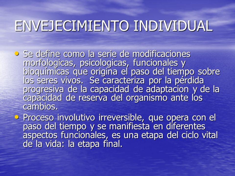 ESCALA GERIATRICA DE EVALUACION FUNCIONAL CONTINENCIA CONTINENCIA MOVILIDAD MOVILIDAD EQUILIBRIO EQUILIBRIO VISION VISION AUDICION AUDICION USO DE MEDICAMENTOS USO DE MEDICAMENTOS SUEÑO SUEÑO ESTADO EMOCIONAL ESTADO EMOCIONAL MEMORIA MEMORIA SITUACION FAMILIAR SITUACION FAMILIAR SITUACION SOCIAL SITUACION SOCIAL SITUACION ECONOMICA SITUACION ECONOMICA