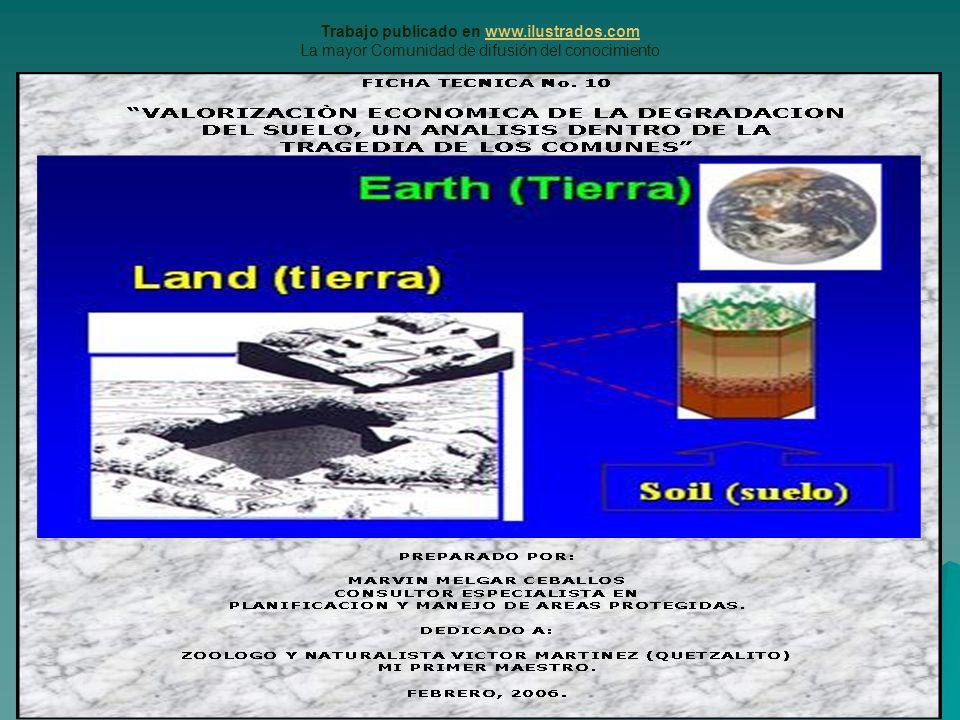Trabajo publicado en www.ilustrados.comwww.ilustrados.com La mayor Comunidad de difusión del conocimiento