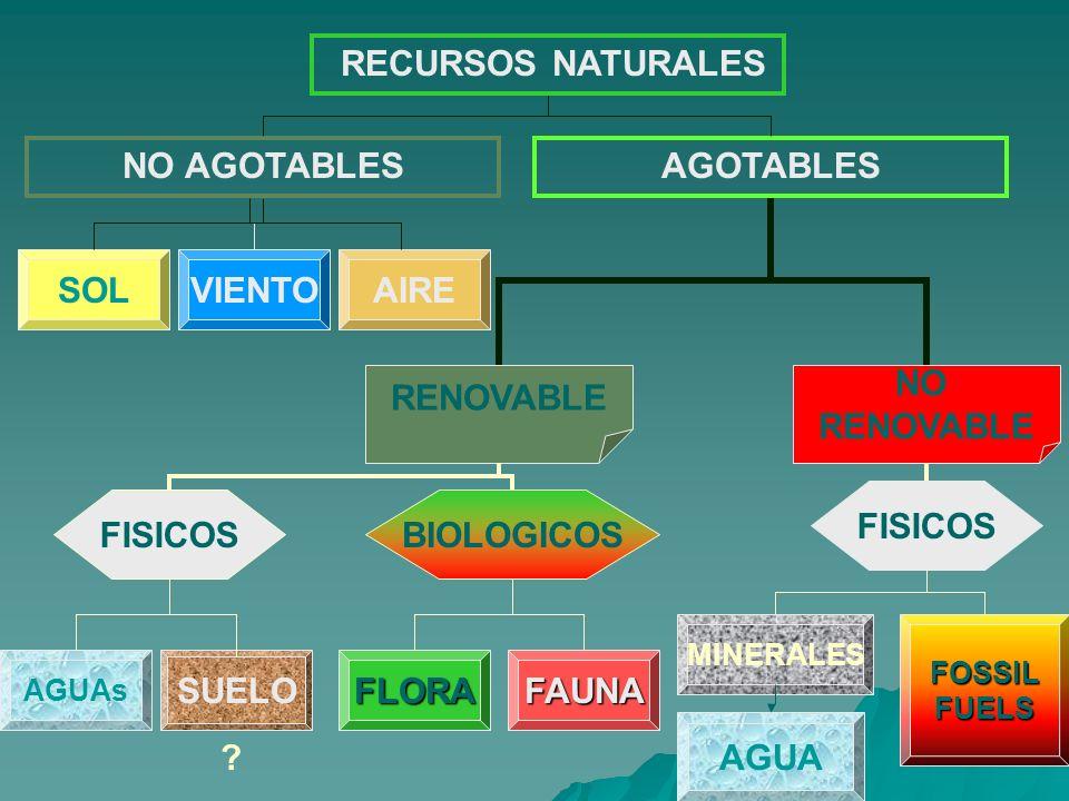 RECURSOS NATURALES NO AGOTABLESAGOTABLES SOLVIENTOAIRE RENOVABLE NO RENOVABLE AGUAs SUELO FLORAFAUNA FISICOS BIOLOGICOS MINERALESFOSSILFUELS AGUA ?