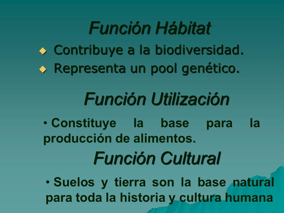 Función Hábitat Contribuye a la biodiversidad.Contribuye a la biodiversidad.