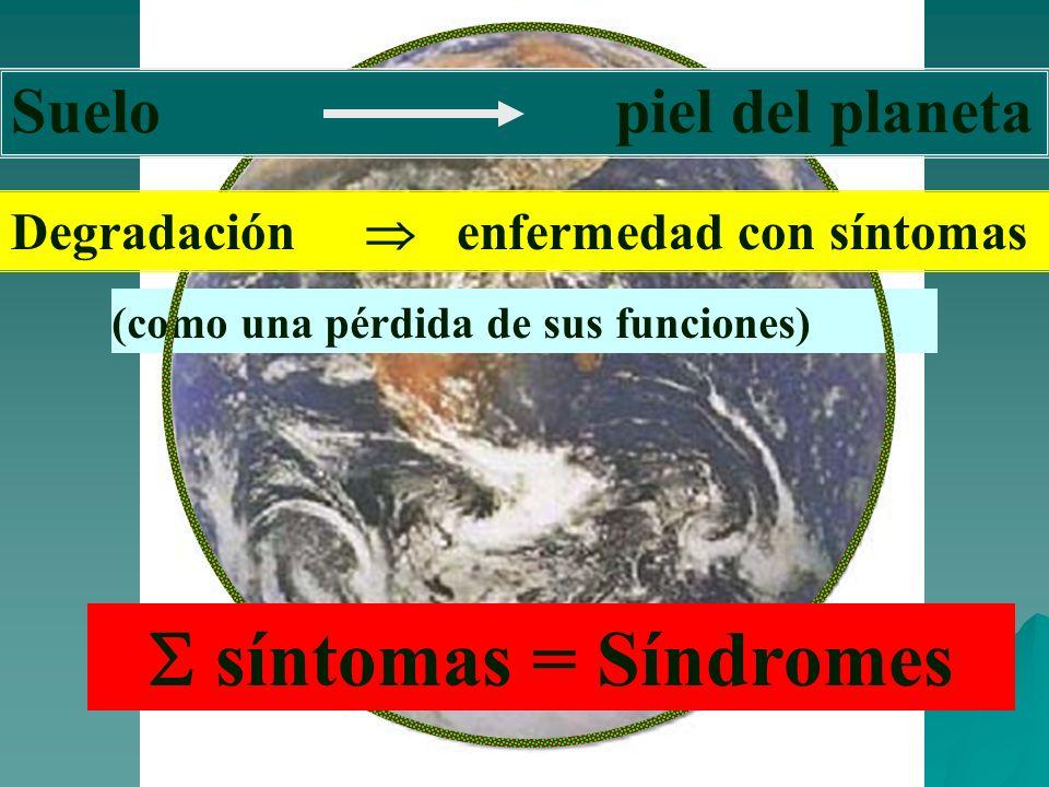 (como una pérdida de sus funciones) Suelo piel del planeta Degradación enfermedad con síntomas síntomas = Síndromes