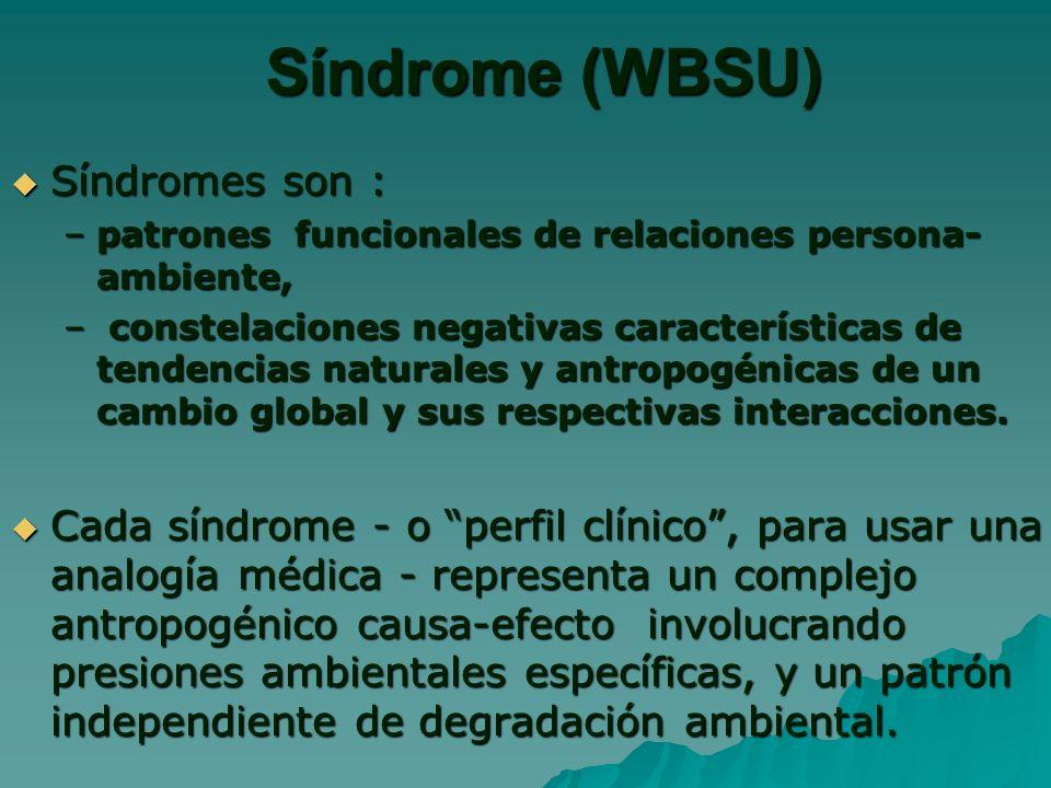 Síndrome (WBSU) Síndromes son : Síndromes son : –patrones funcionales de relaciones persona- ambiente, – constelaciones negativas características de tendencias naturales y antropogénicas de un cambio global y sus respectivas interacciones.