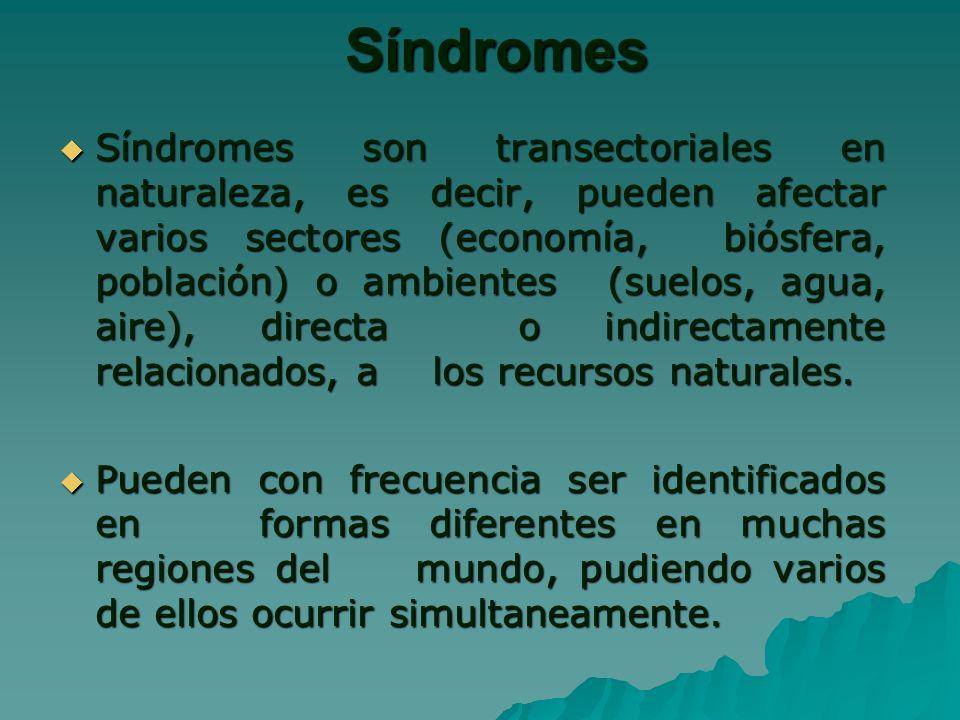 Síndromes Síndromes son transectoriales en naturaleza, es decir, pueden afectar varios sectores (economía, biósfera, población) o ambientes (suelos, agua, aire), directa o indirectamente relacionados, a los recursos naturales.