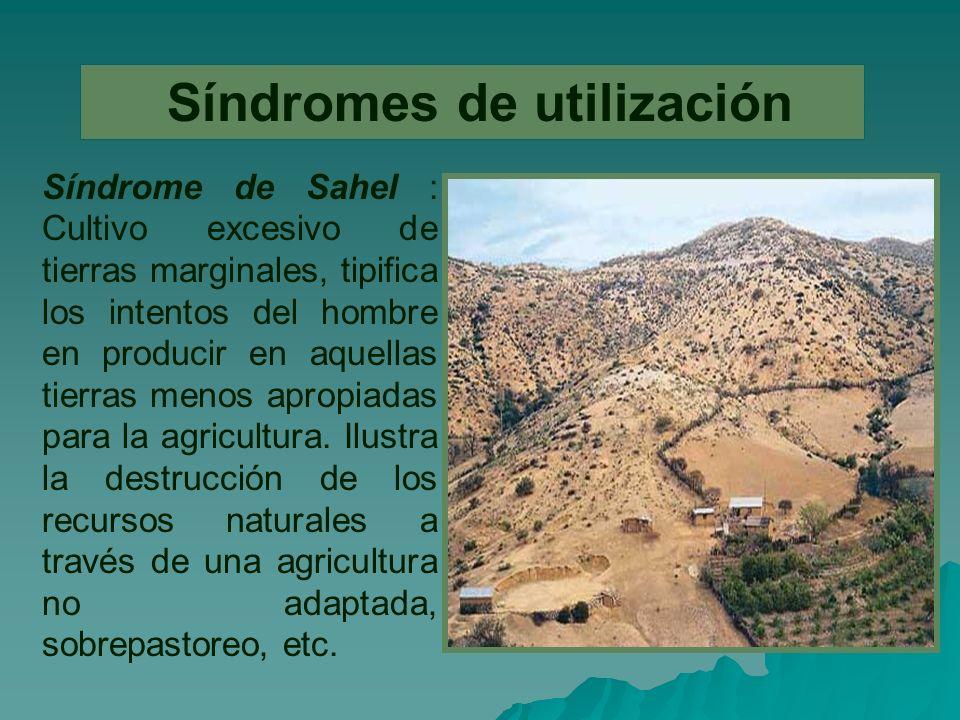 Síndromes de utilización Síndrome de Sahel : Cultivo excesivo de tierras marginales, tipifica los intentos del hombre en producir en aquellas tierras menos apropiadas para la agricultura.