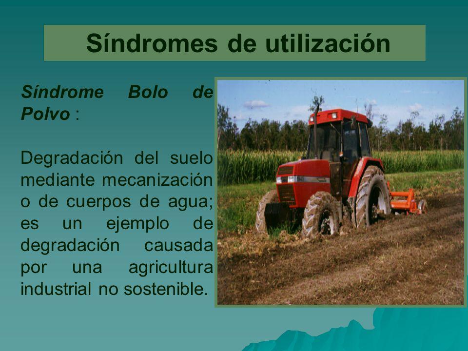 Síndromes de utilización Síndrome Bolo de Polvo : Degradación del suelo mediante mecanización o de cuerpos de agua; es un ejemplo de degradación causada por una agricultura industrial no sostenible.