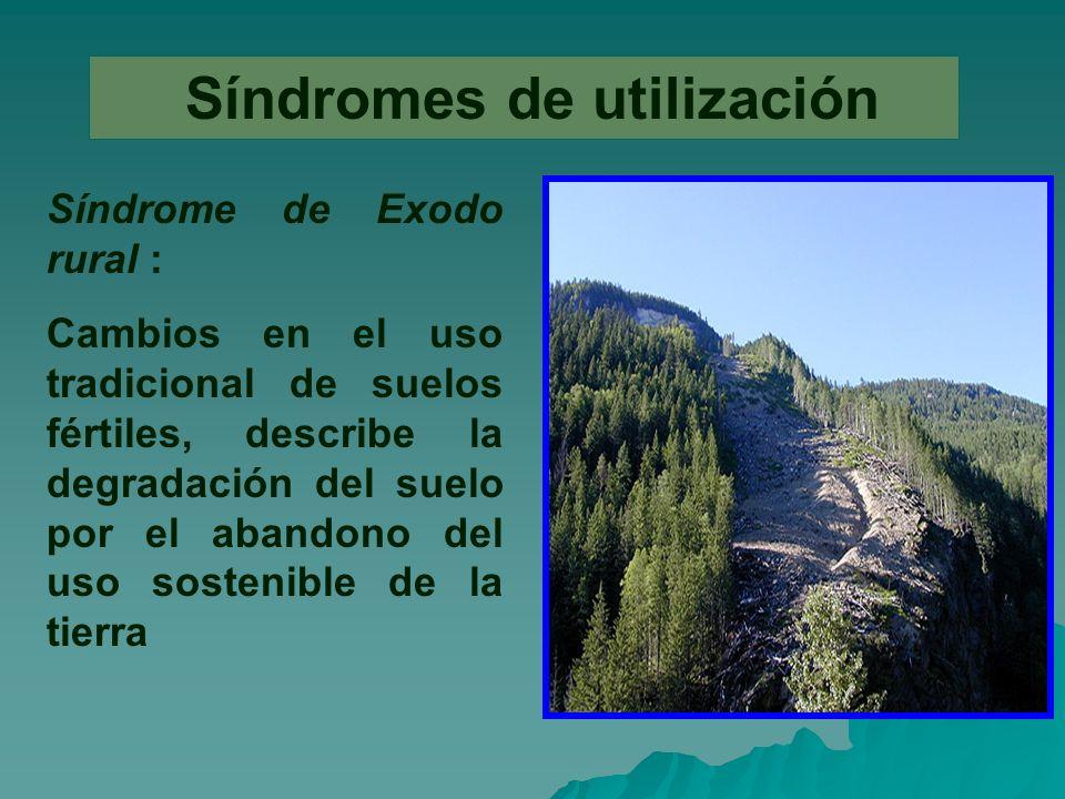 Síndromes de utilización Síndrome de Exodo rural : Cambios en el uso tradicional de suelos fértiles, describe la degradación del suelo por el abandono del uso sostenible de la tierra