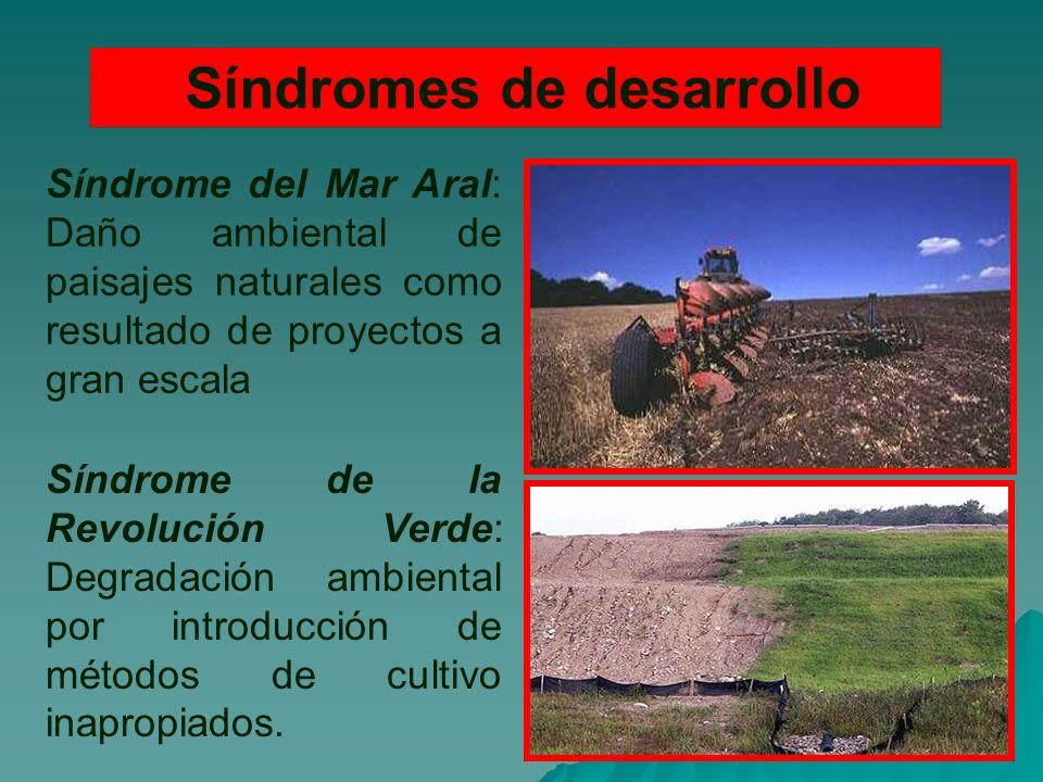 Síndromes de desarrollo Síndrome del Mar Aral: Daño ambiental de paisajes naturales como resultado de proyectos a gran escala Síndrome de la Revolución Verde: Degradación ambiental por introducción de métodos de cultivo inapropiados.