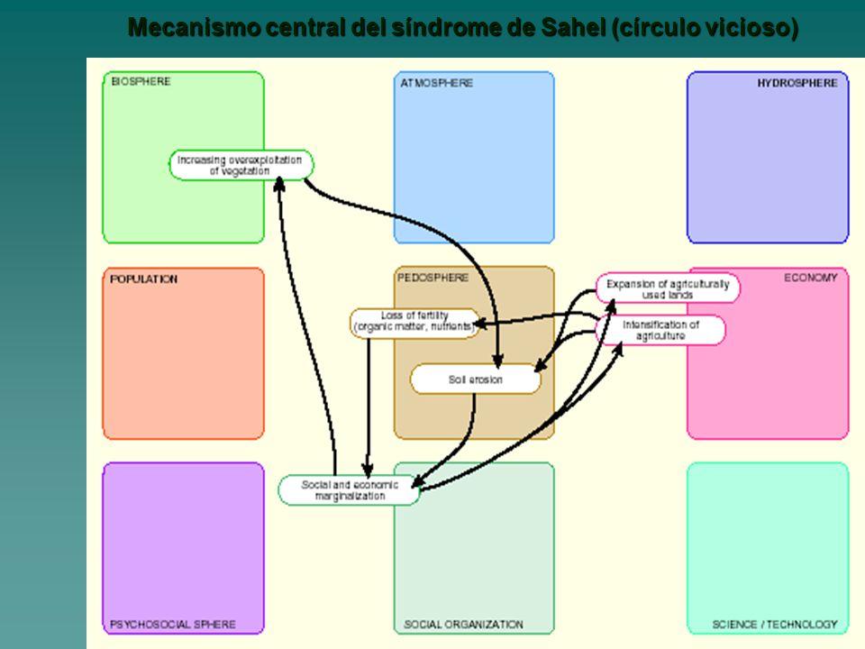 Mecanismo central del síndrome de Sahel (círculo vicioso)