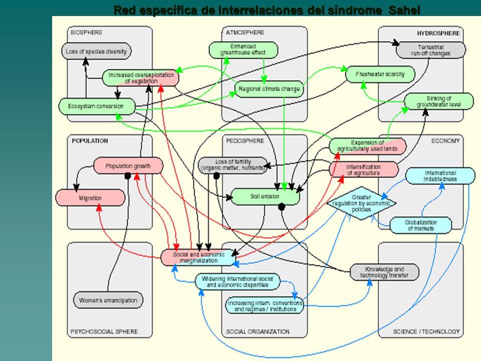Red específica de interrelaciones del síndrome Sahel