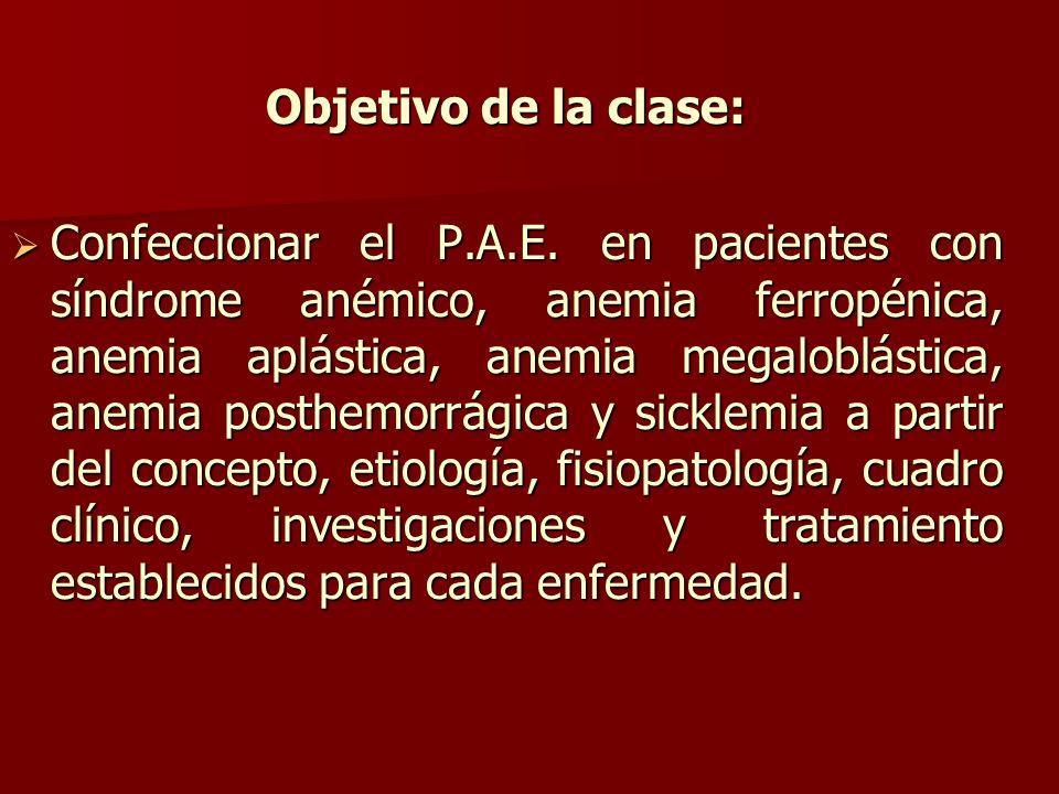 Objetivo de la clase: Confeccionar el P.A.E.