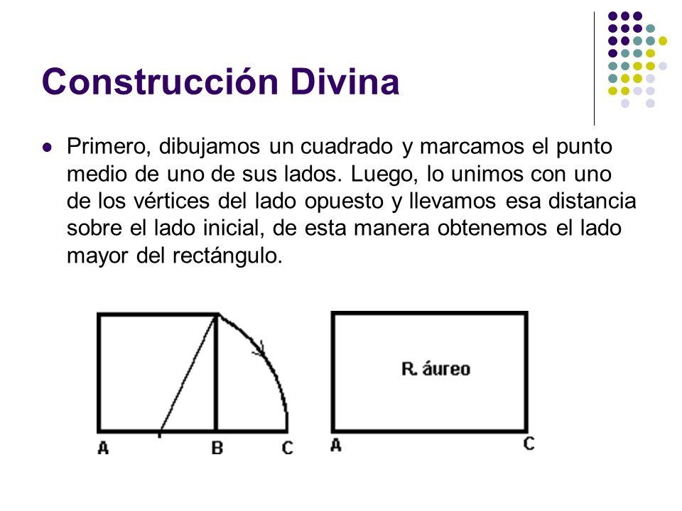 Construcción Divina Primero, dibujamos un cuadrado y marcamos el punto medio de uno de sus lados. Luego, lo unimos con uno de los vértices del lado op