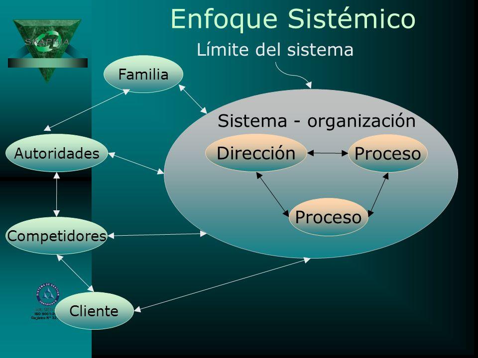 Enfoque Sistémico Familia Autoridades Competidores Cliente Dirección Proceso Sistema - organización Límite del sistema