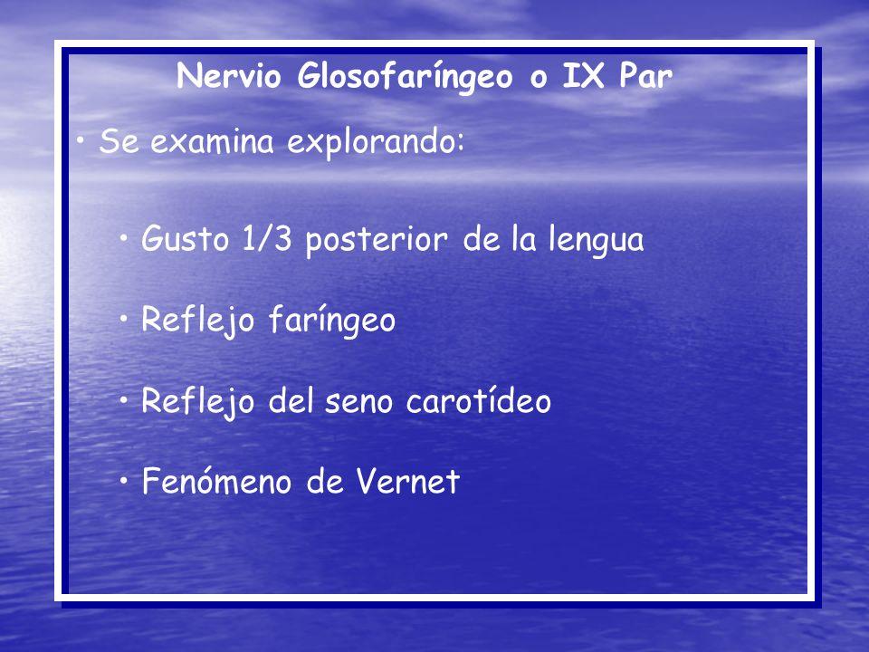 Nervio Glosofaríngeo o IX Par Se examina explorando: Gusto 1/3 posterior de la lengua Reflejo faríngeo Reflejo del seno carotídeo Fenómeno de Vernet