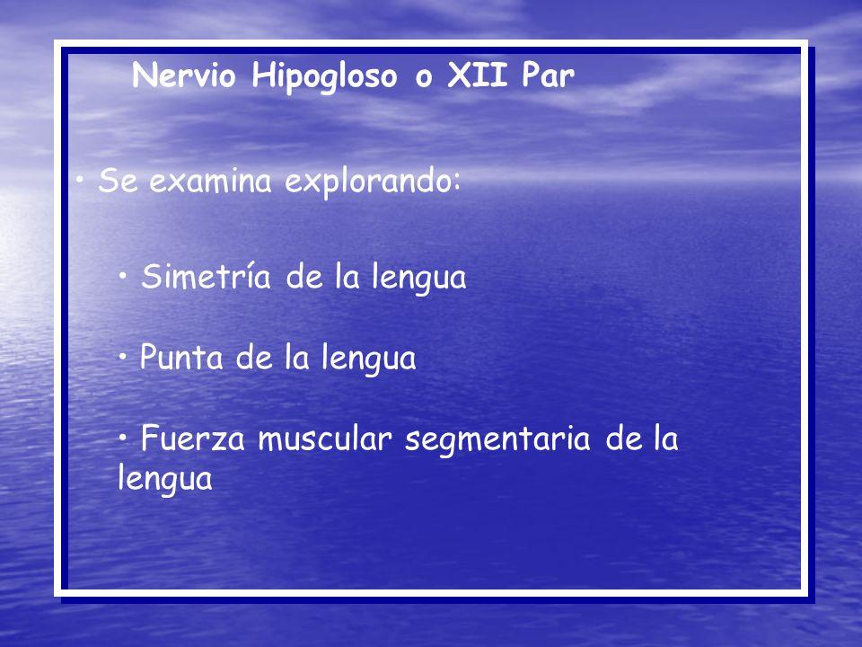 Nervio Hipogloso o XII Par Se examina explorando: Simetría de la lengua Punta de la lengua Fuerza muscular segmentaria de la lengua