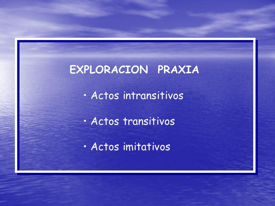EXPLORACION PRAXIA Actos intransitivos Actos transitivos Actos imitativos