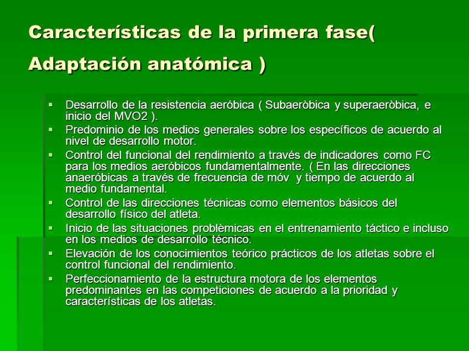 Características de la primera fase( Adaptación anatómica ) Desarrollo de la resistencia aeróbica ( Subaeròbica y superaeròbica, e inicio del MVO2 ). D