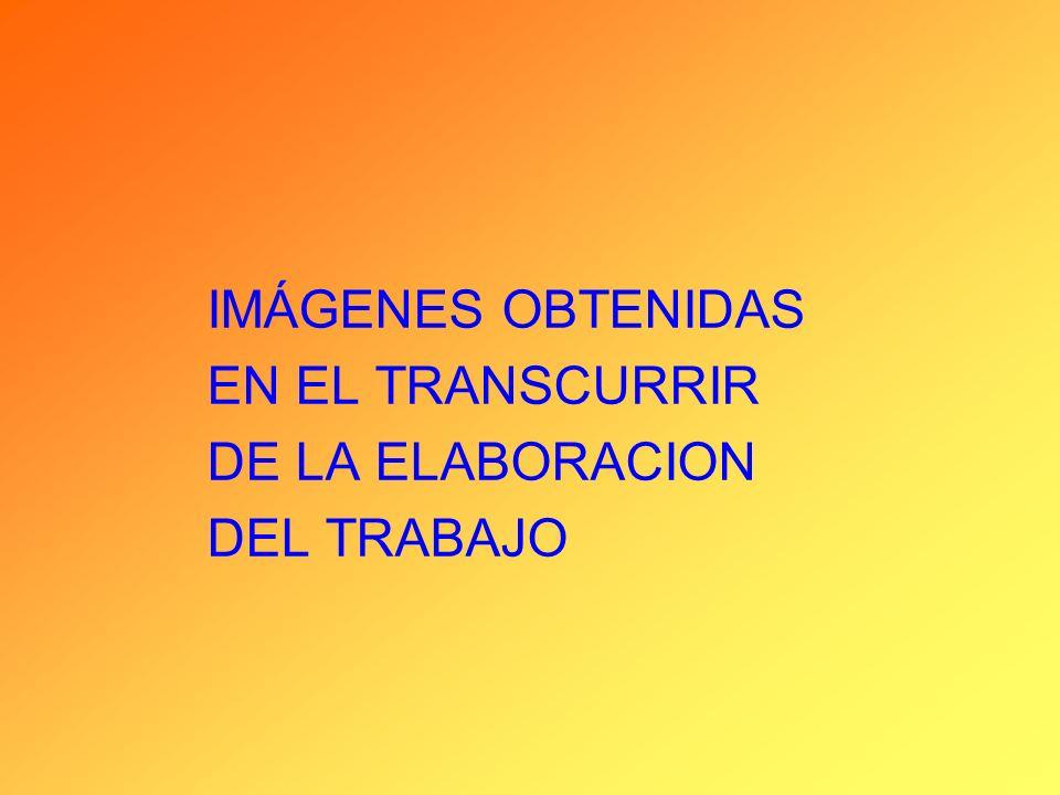IMÁGENES OBTENIDAS EN EL TRANSCURRIR DE LA ELABORACION DEL TRABAJO