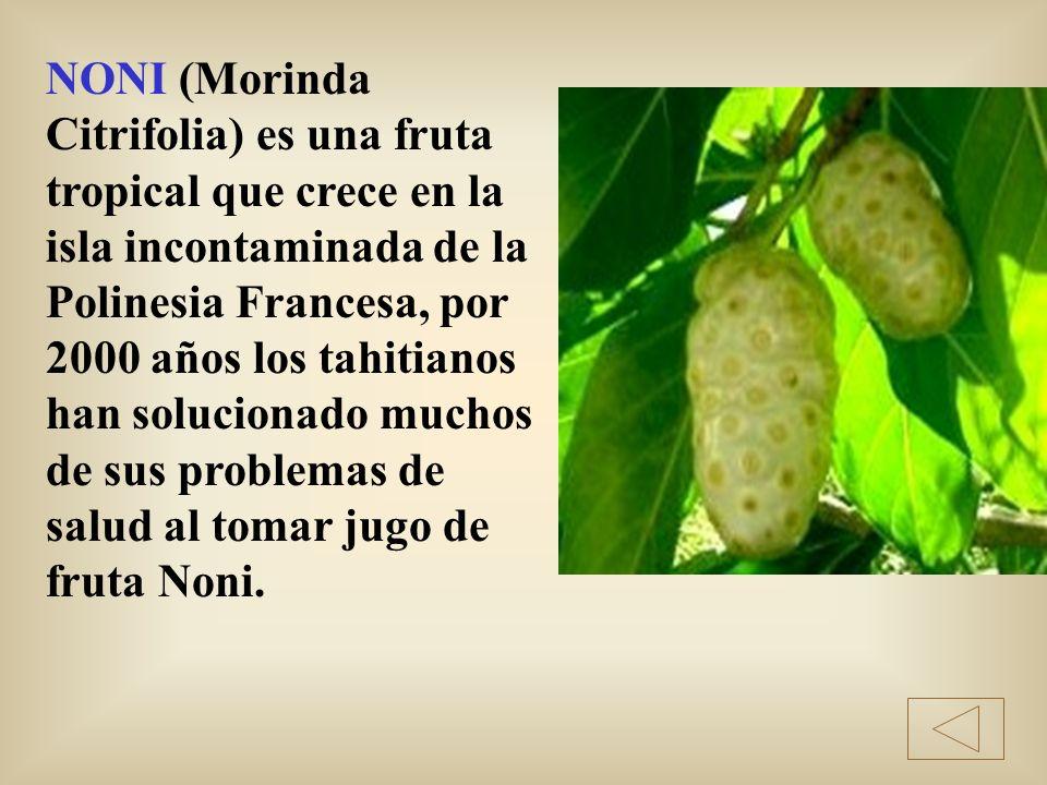 NONI (Morinda Citrifolia) es una fruta tropical que crece en la isla incontaminada de la Polinesia Francesa, por 2000 años los tahitianos han solucion