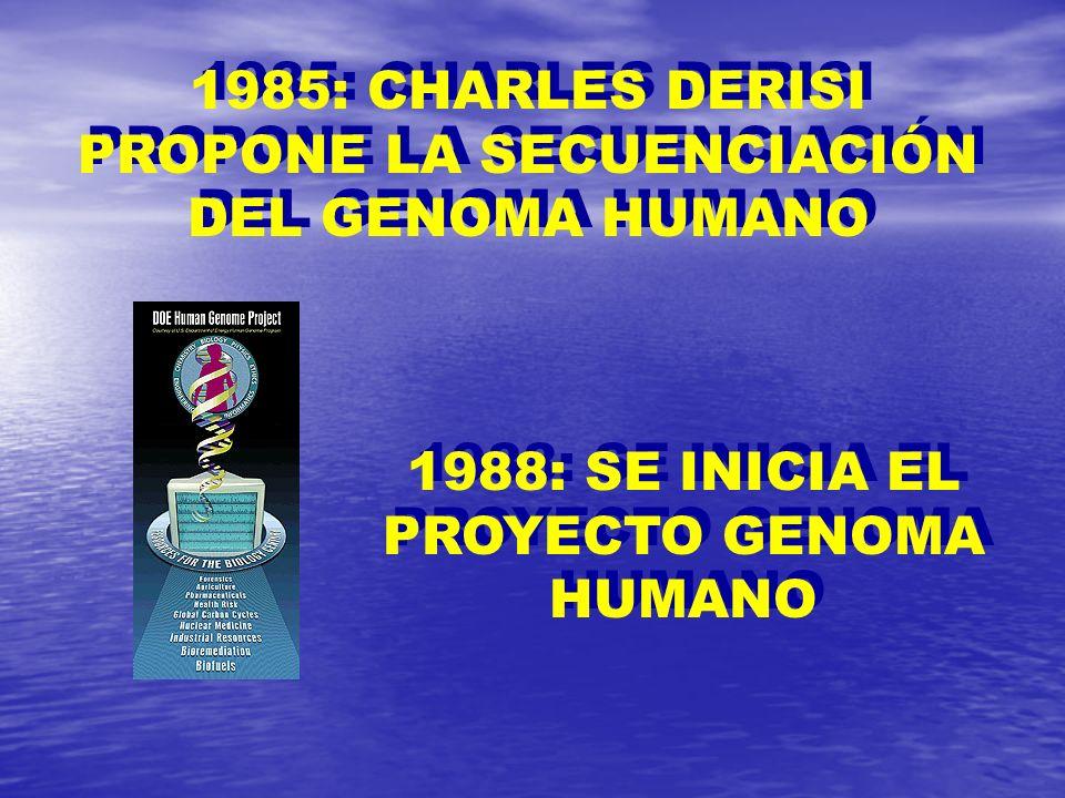 1985: CHARLES DERISI PROPONE LA SECUENCIACIÓN DEL GENOMA HUMANO 1988: SE INICIA EL PROYECTO GENOMA HUMANO
