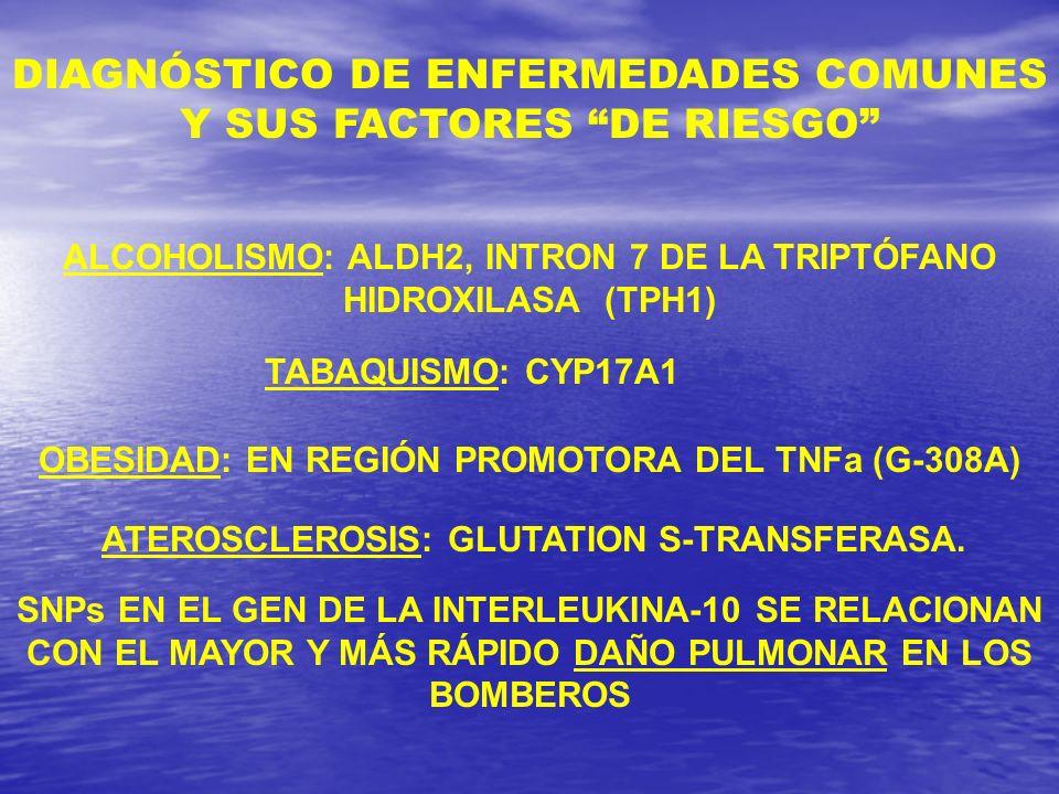 ALCOHOLISMO: ALDH2, INTRON 7 DE LA TRIPTÓFANO HIDROXILASA (TPH1) TABAQUISMO: CYP17A1 OBESIDAD: EN REGIÓN PROMOTORA DEL TNFa (G-308A) ATEROSCLEROSIS: G