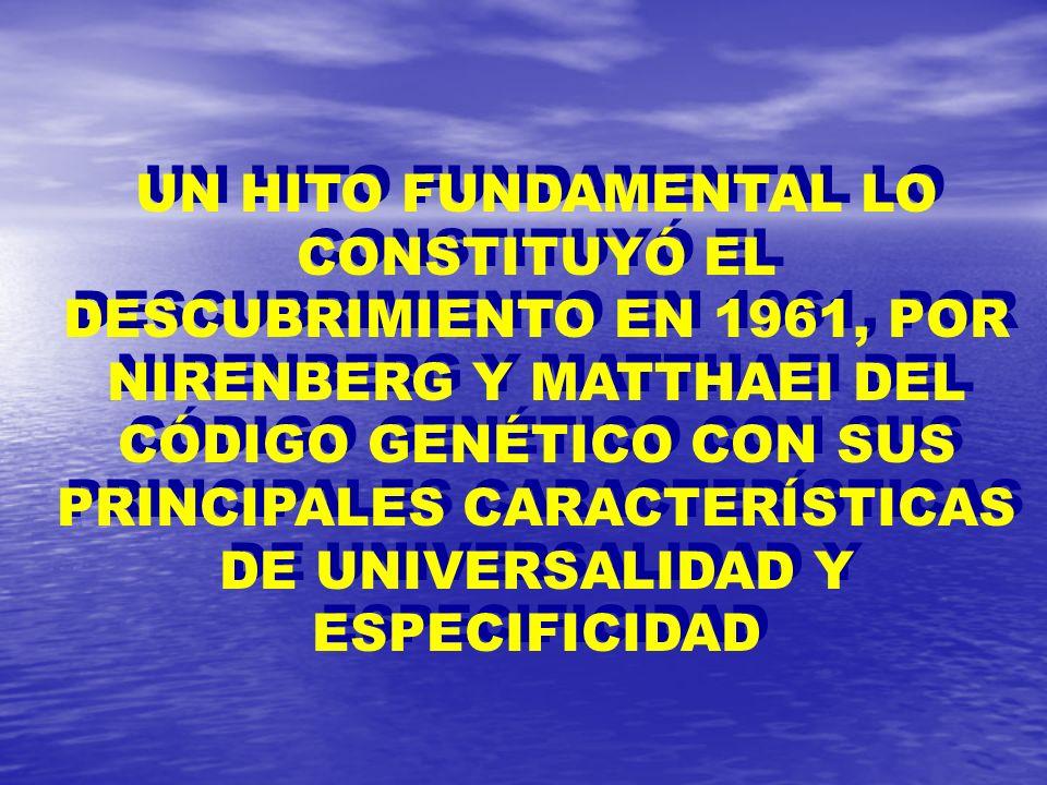 UN HITO FUNDAMENTAL LO CONSTITUYÓ EL DESCUBRIMIENTO EN 1961, POR NIRENBERG Y MATTHAEI DEL CÓDIGO GENÉTICO CON SUS PRINCIPALES CARACTERÍSTICAS DE UNIVE