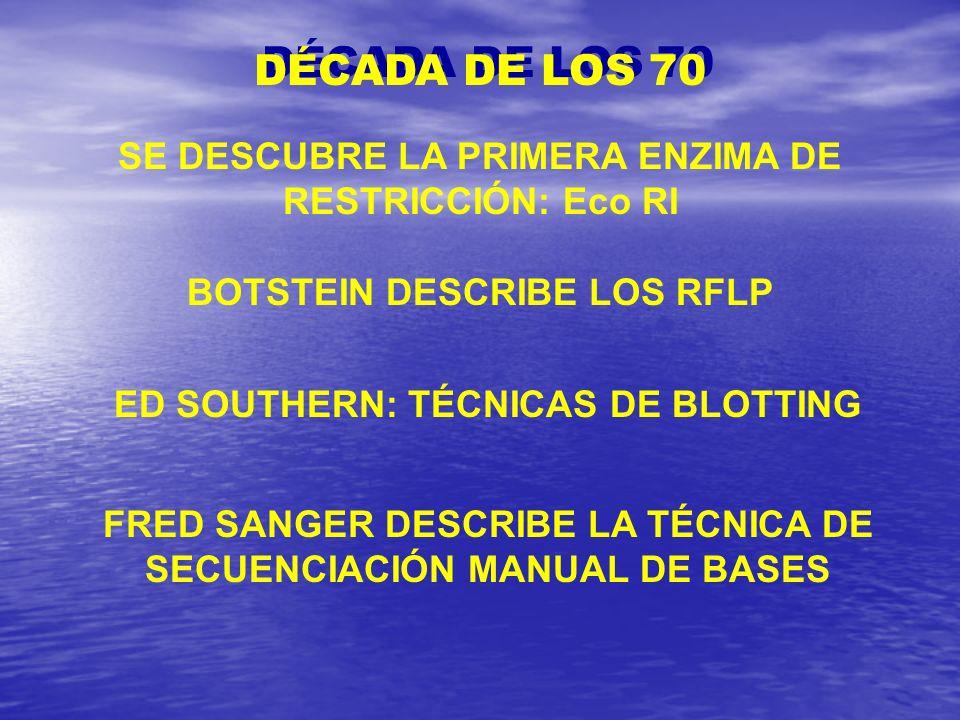 ED SOUTHERN: TÉCNICAS DE BLOTTING DÉCADA DE LOS 70 SE DESCUBRE LA PRIMERA ENZIMA DE RESTRICCIÓN: Eco RI BOTSTEIN DESCRIBE LOS RFLP FRED SANGER DESCRIB