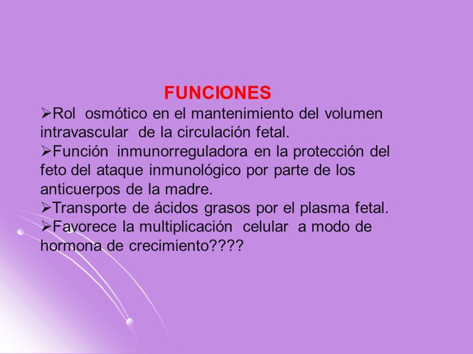 FUNCIONES Rol osmótico en el mantenimiento del volumen intravascular de la circulación fetal. Función inmunorreguladora en la protección del feto del
