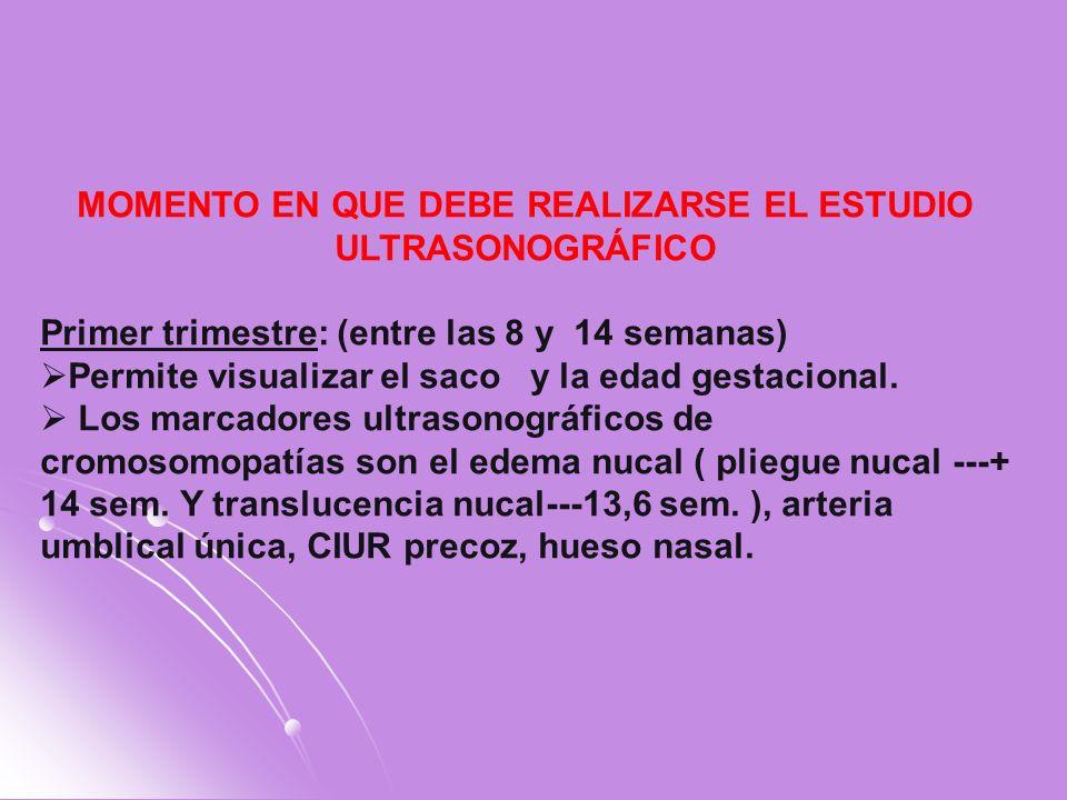 MOMENTO EN QUE DEBE REALIZARSE EL ESTUDIO ULTRASONOGRÁFICO Primer trimestre: (entre las 8 y 14 semanas) Permite visualizar el saco y la edad gestacion