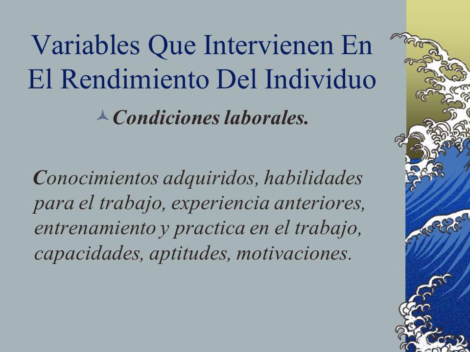 Variables Que Intervienen En El Rendimiento Del Individuo Condiciones laborales. Conocimientos adquiridos, habilidades para el trabajo, experiencia an