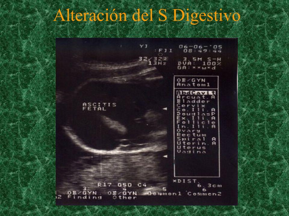 Conclusiones El ultrasonido es un medio eficaz para el diagnóstico de malformaciones congénitas.