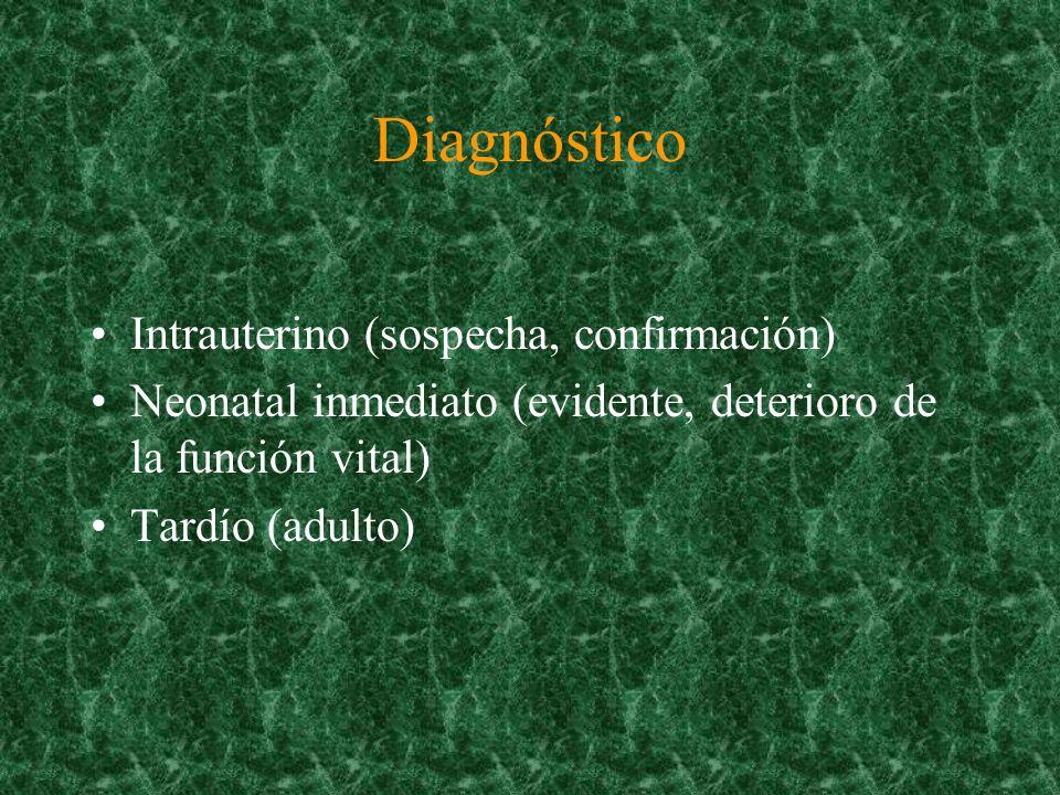 Malformaciones Congénitas Con Ultrasonografia Sensibilidad53% Especificidad99% Goncalves L, Jeanty P ; AM.