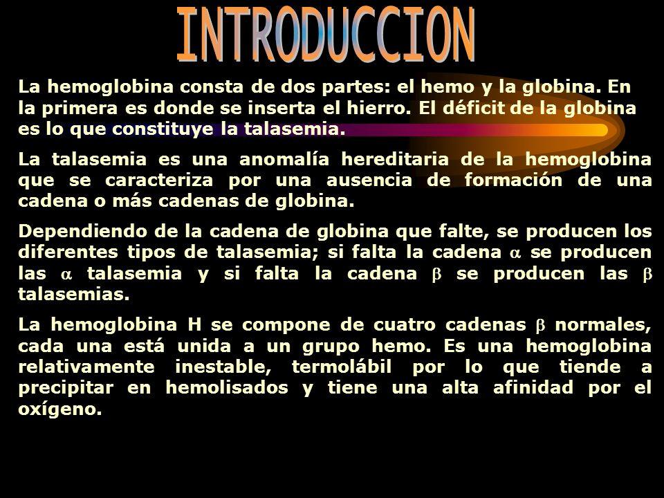 La hemoglobina consta de dos partes: el hemo y la globina. En la primera es donde se inserta el hierro. El déficit de la globina es lo que constituye