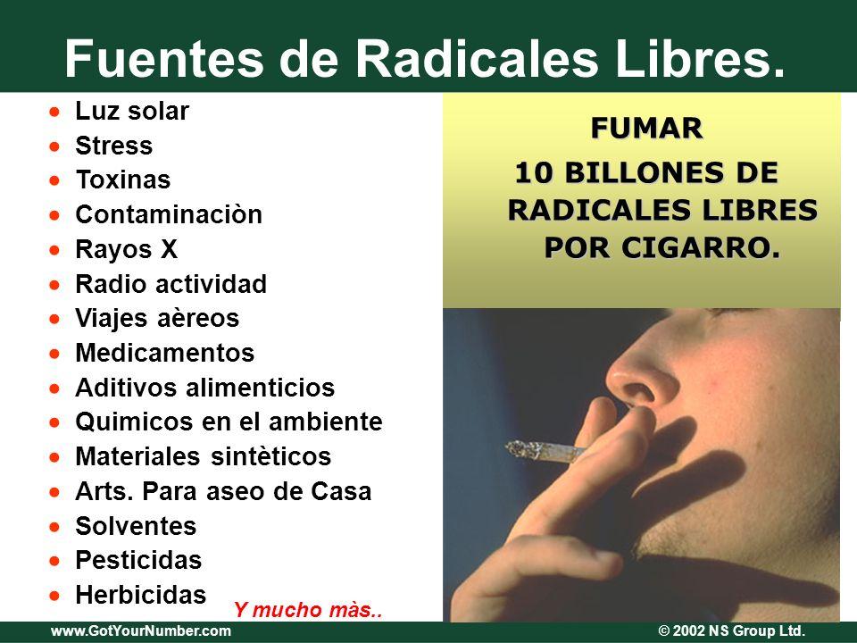 www.GotYourNumber.com © 2002 NS Group Ltd. Fuentes de Radicales Libres. Luz solar Stress Toxinas Contaminaciòn Rayos X Radio actividad Viajes aèreos M