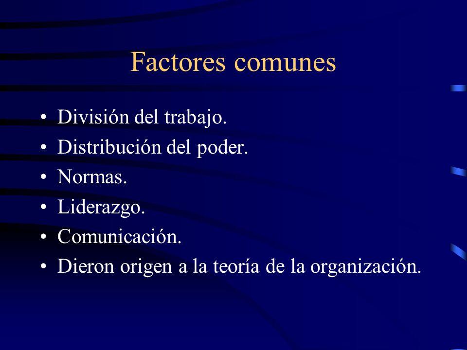 Factores comunes División del trabajo. Distribución del poder. Normas. Liderazgo. Comunicación. Dieron origen a la teoría de la organización.