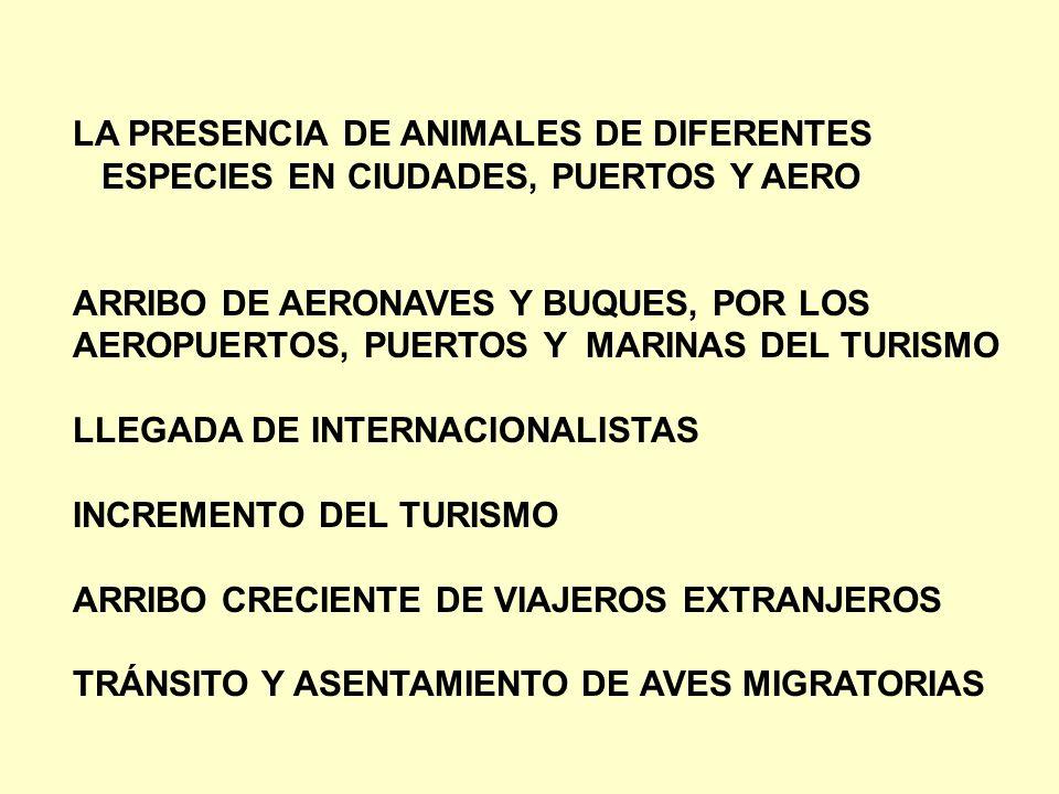 LA PRESENCIA DE ANIMALES DE DIFERENTES ESPECIES EN CIUDADES, PUERTOS Y AERO ARRIBO DE AERONAVES Y BUQUES, POR LOS AEROPUERTOS, PUERTOS Y MARINAS DEL T