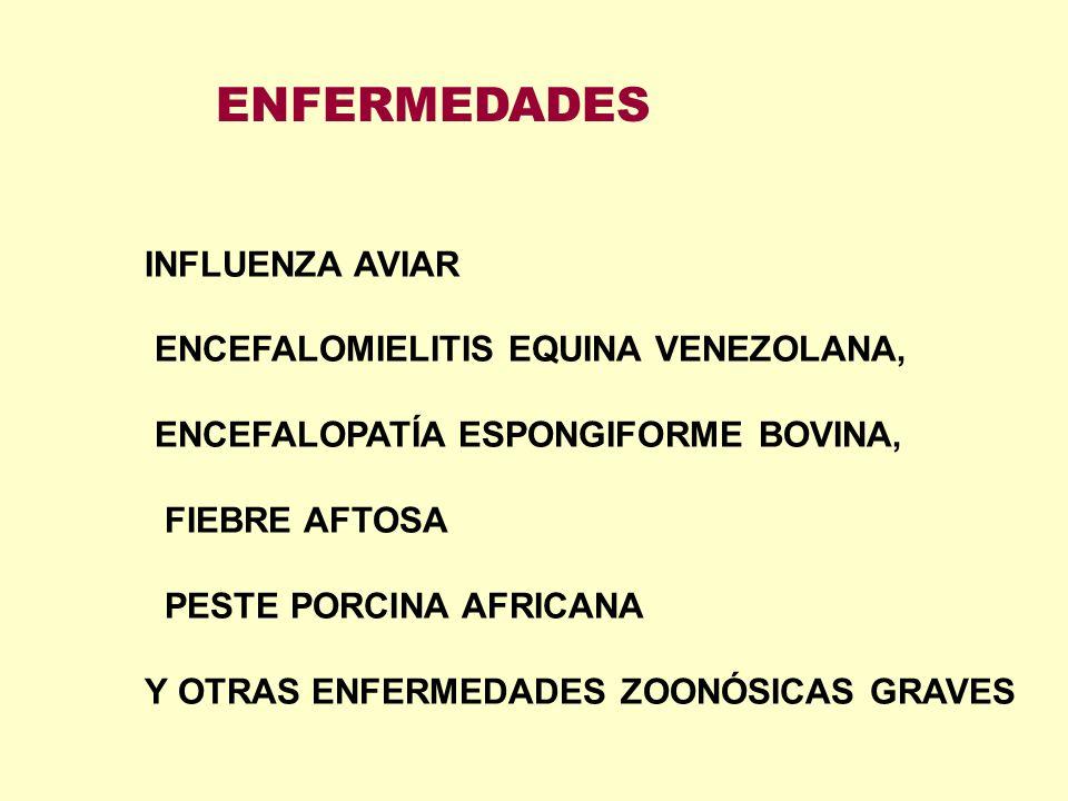 INFLUENZA AVIAR ENCEFALOMIELITIS EQUINA VENEZOLANA, ENCEFALOPATÍA ESPONGIFORME BOVINA, FIEBRE AFTOSA PESTE PORCINA AFRICANA Y OTRAS ENFERMEDADES ZOONÓ