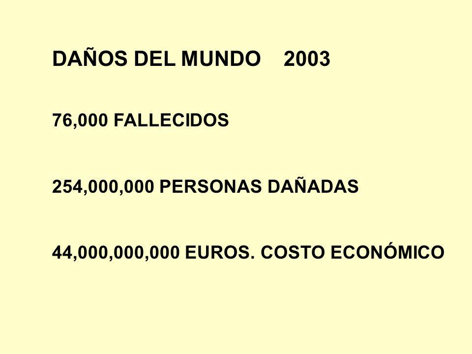 DAÑOS DEL MUNDO 2003 76,000 FALLECIDOS 254,000,000 PERSONAS DAÑADAS 44,000,000,000 EUROS. COSTO ECONÓMICO