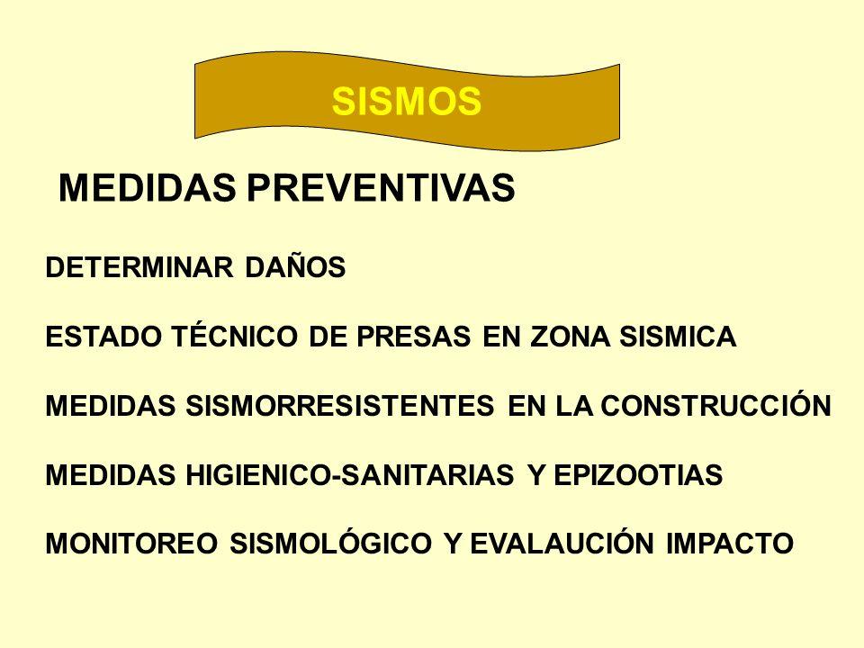 MEDIDAS PREVENTIVAS DETERMINAR DAÑOS ESTADO TÉCNICO DE PRESAS EN ZONA SISMICA MEDIDAS SISMORRESISTENTES EN LA CONSTRUCCIÓN MEDIDAS HIGIENICO-SANITARIA