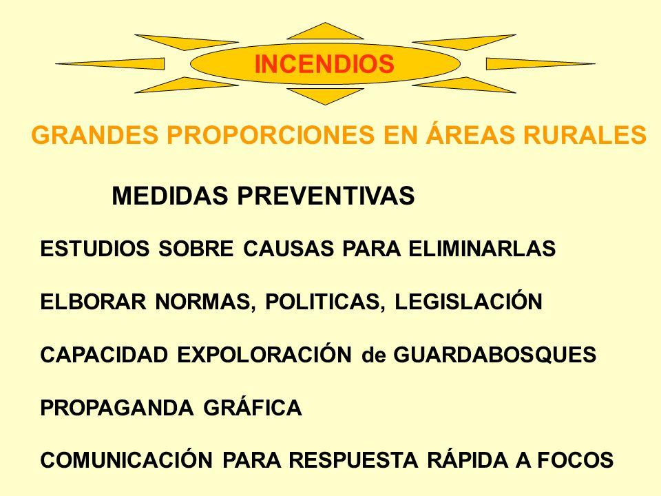 INCENDIOS GRANDES PROPORCIONES EN ÁREAS RURALES MEDIDAS PREVENTIVAS ESTUDIOS SOBRE CAUSAS PARA ELIMINARLAS ELBORAR NORMAS, POLITICAS, LEGISLACIÓN CAPA