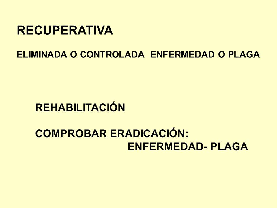 RECUPERATIVA ELIMINADA O CONTROLADA ENFERMEDAD O PLAGA REHABILITACIÓN COMPROBAR ERADICACIÓN: ENFERMEDAD- PLAGA