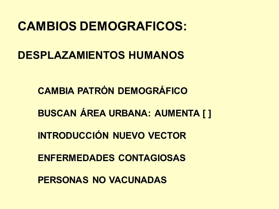 CAMBIOS DEMOGRAFICOS: DESPLAZAMIENTOS HUMANOS CAMBIA PATRÓN DEMOGRÁFICO BUSCAN ÁREA URBANA: AUMENTA [ ] INTRODUCCIÓN NUEVO VECTOR ENFERMEDADES CONTAGI