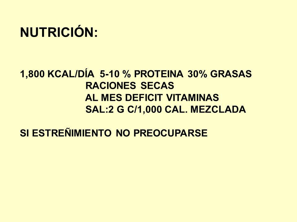 NUTRICIÓN: 1,800 KCAL/DÍA 5-10 % PROTEINA 30% GRASAS RACIONES SECAS AL MES DEFICIT VITAMINAS SAL:2 G C/1,000 CAL. MEZCLADA SI ESTREÑIMIENTO NO PREOCUP