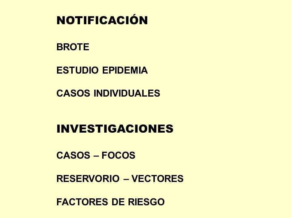 NOTIFICACIÓN BROTE ESTUDIO EPIDEMIA CASOS INDIVIDUALES INVESTIGACIONES CASOS – FOCOS RESERVORIO – VECTORES FACTORES DE RIESGO