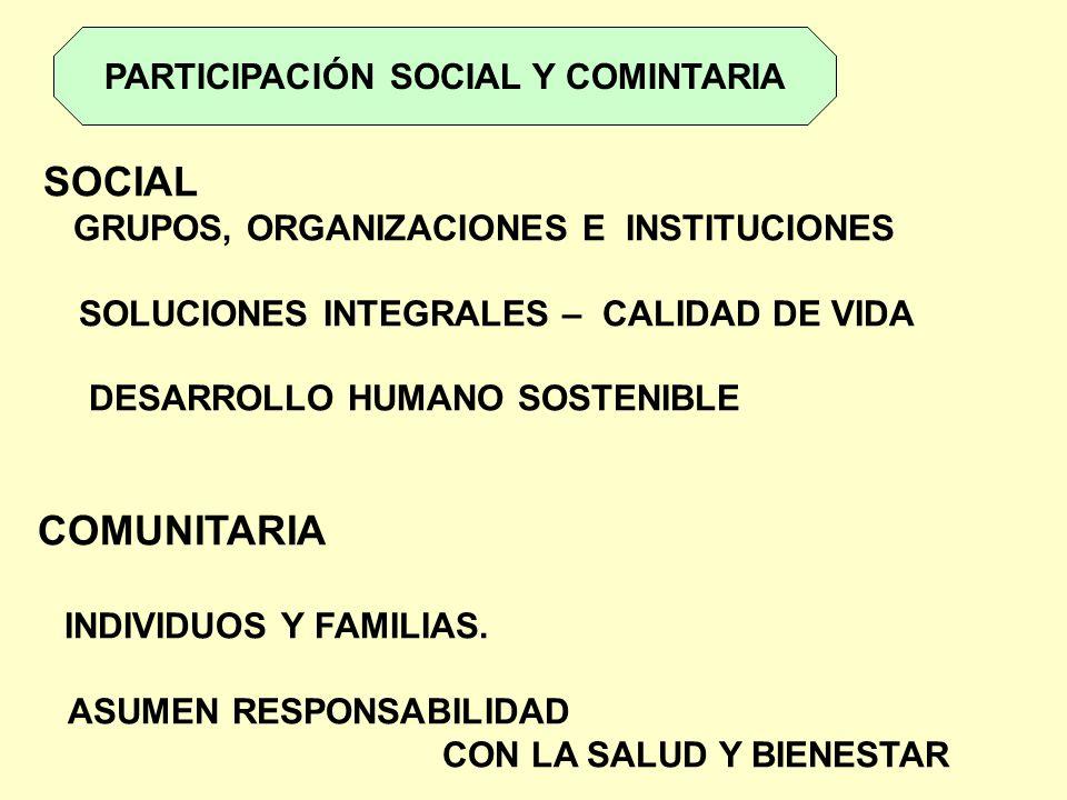 PARTICIPACIÓN SOCIAL Y COMINTARIA SOCIAL GRUPOS, ORGANIZACIONES E INSTITUCIONES SOLUCIONES INTEGRALES – CALIDAD DE VIDA DESARROLLO HUMANO SOSTENIBLE C