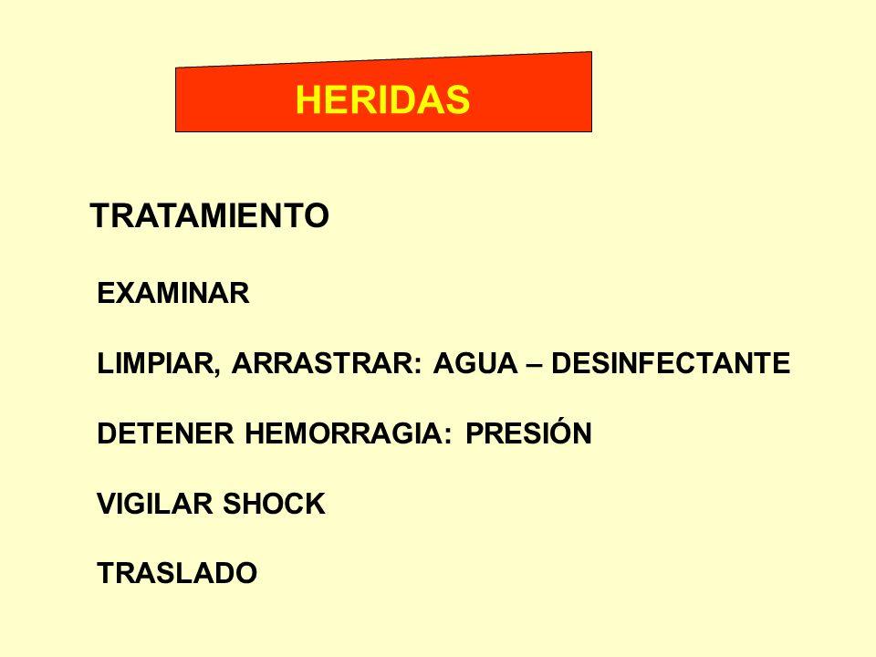 TRATAMIENTO EXAMINAR LIMPIAR, ARRASTRAR: AGUA – DESINFECTANTE DETENER HEMORRAGIA: PRESIÓN VIGILAR SHOCK TRASLADO HERIDAS